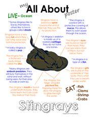 My Animal Doctor Checklist - Play/Pretend (Veterinarian/Doctor) from Courtney McKerley on TeachersNotebook.com (1 page)