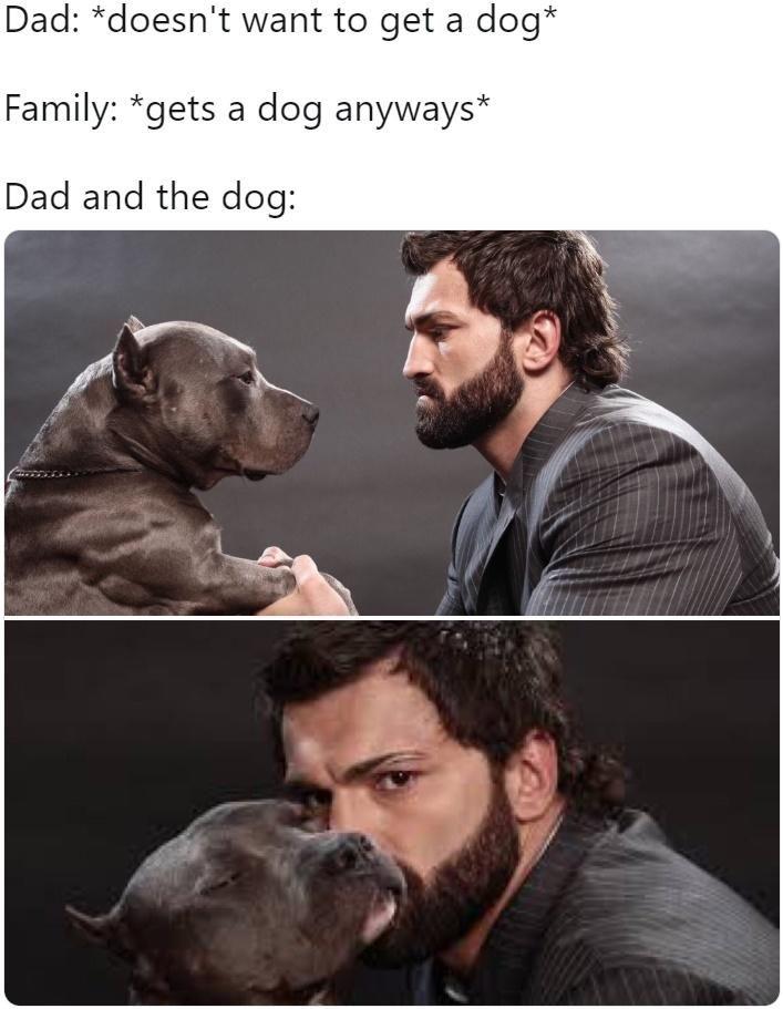 Absolute Woofer Dad And The Dog Dads Dogs Dog Images