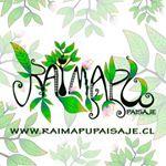 "113 Me gusta, 7 comentarios - Raimapu Paisaje (@raimapupaisaje) en Instagram: ""Jardín vertical grande. Platas: ruda, hierba buena, melisa, romero, solamum, hiedra nana, sedum y…"""