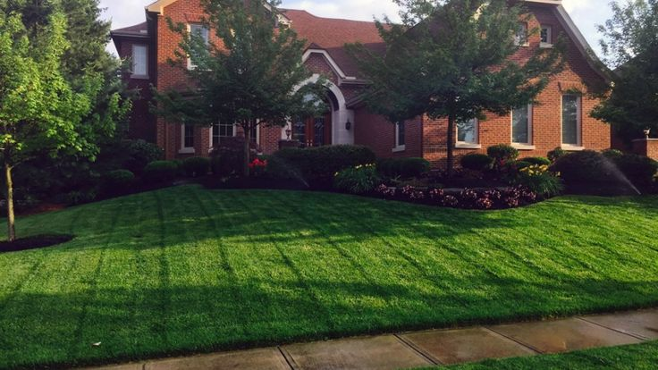 A lush green lawn like this is possible, if you properly mow, fertilize and weed your grass throughout the season.