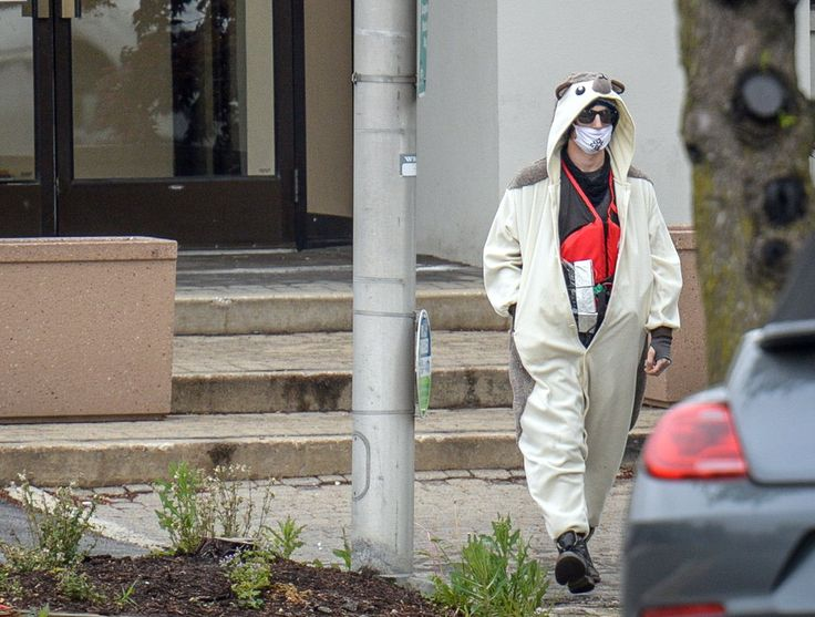 Tea time with Cladora: Man dressed in hedgehog suit shot after threatenin...