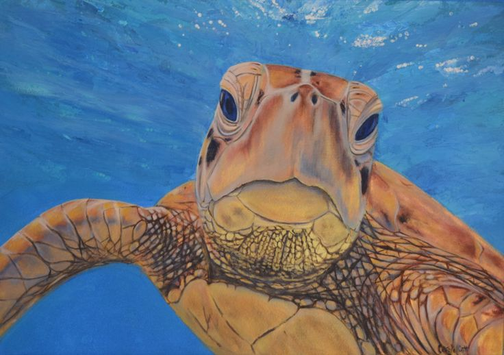 Another beautiful turtle painting by Carole Elliott to support the ReefHQ Turtle Hospital in Townsville!  #ReefHQ #GreatBarrierReef #Turtle #Acrylic #Art #originalpainting #carolelliott7