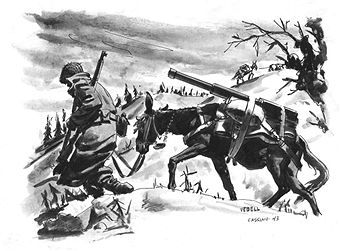 A drawing for the US Army 'Stars and Stripes' newspaper shows a U.S. soldier transporting supplies by mule during the Battle of Monte Cassino in May 1944. Pin by Paolo Marzioli