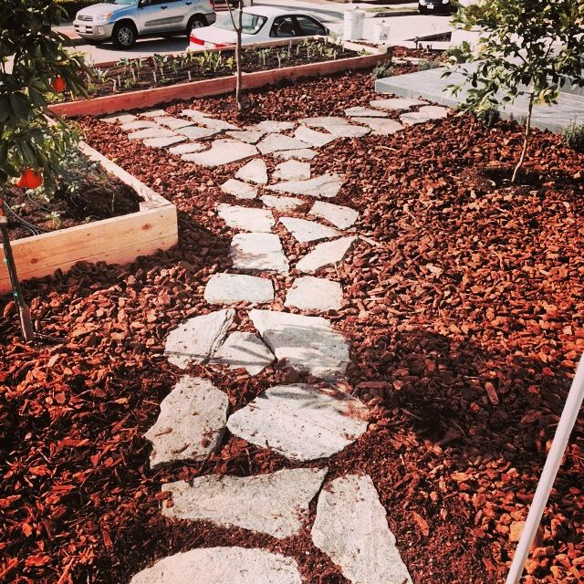 Sydney Peak Flagstone In Medium Bark Mulch Around Fruit