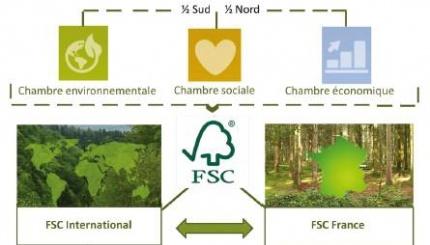 FSC Forest Stewardship Council France (FSC-FR) · Gouvernance
