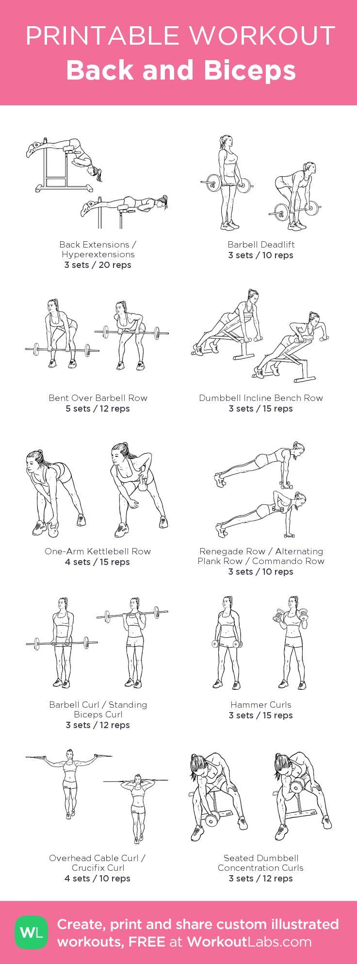 Back & Biceps (Sample gym workout)