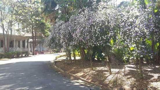 Parque Vicentina Aranha em São José dos Campos, SP