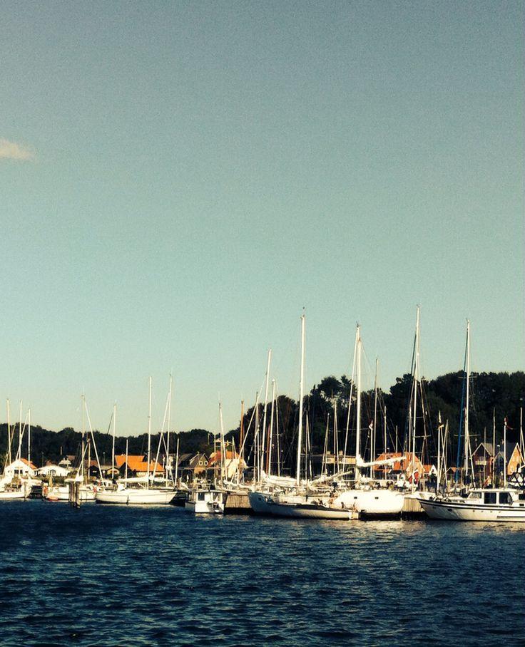 Marigarer fjord