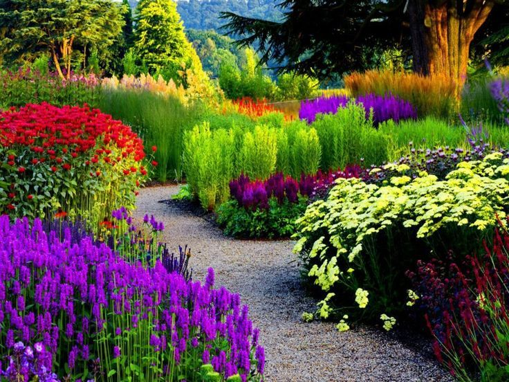 Flower Garden Path 147 best beautiful gardens images on pinterest | beautiful gardens