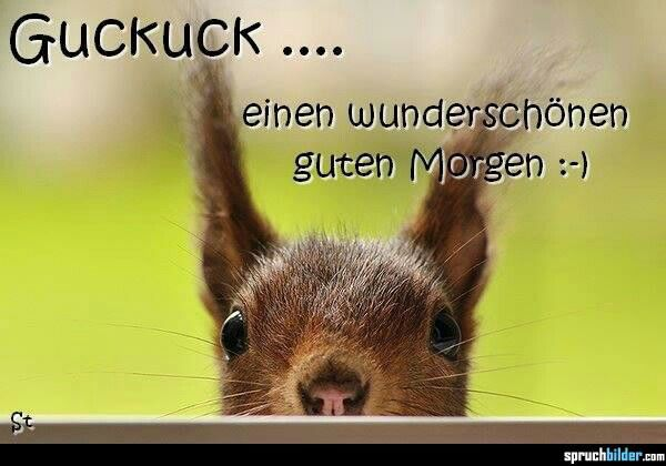 Good Morning Madam In German : Best images about guten morgen on pinterest good day