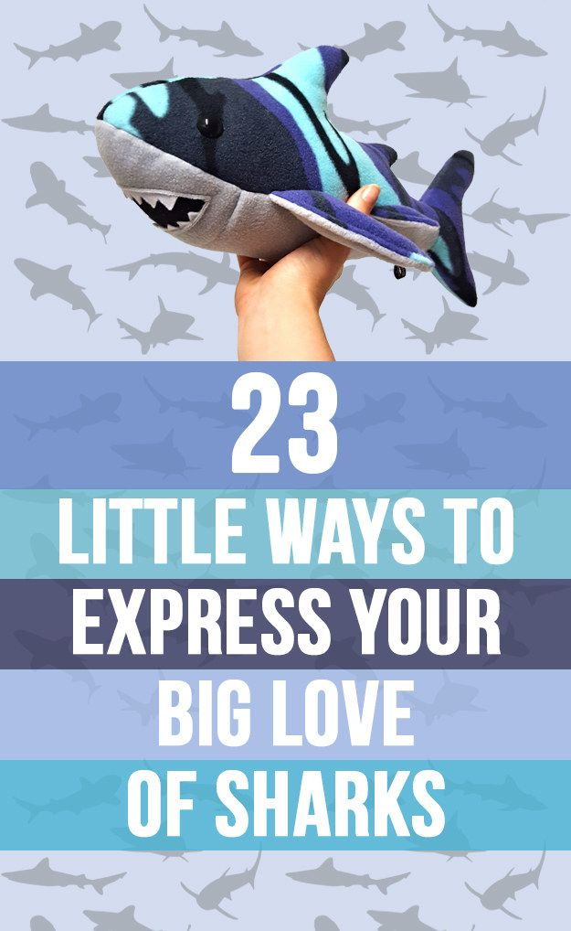 23 Little Ways To Express Your Big Love Of Sharks