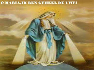 """JEZUS en MARIA Groep.: TOEWIJDING AAN MARIA ALS LEVENSTAAK.""""Echte, totale toewijding aan Maria is een levenshouding die berust op een roeping door Maria."""""""