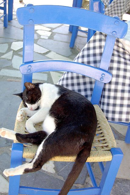 Enjoying a siesta in Crete, Greece