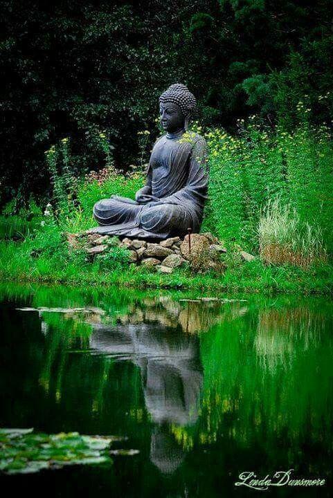 Tropical Backyard, Buddha Zen, Meditation Garden, Buddha Statues, Zen  Gardens, Ganesh, Deities, Scorpio, Buddhism