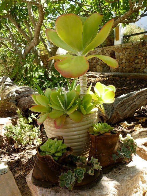 VIDA Foldaway Tote - Botanical succulent by VIDA jGdpqu