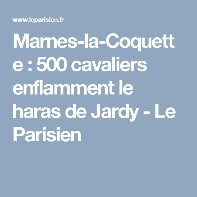 Marnes-la-Coquette : 500 cavaliers enflamment le haras de Jardy - Le Parisien