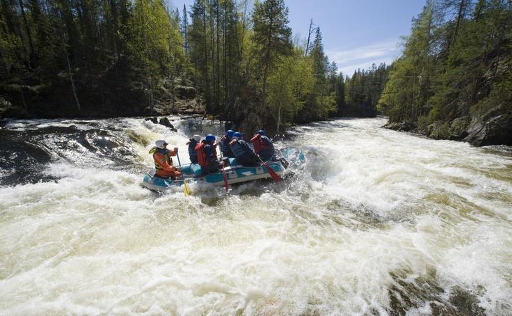Wildwater rafting in Oulanka PAN Park / Photo: Paavo Hamunen