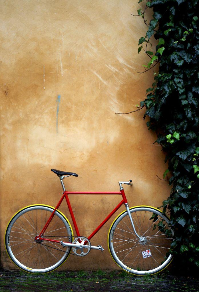 Beautiful beautiful beautiful bike! #fixie