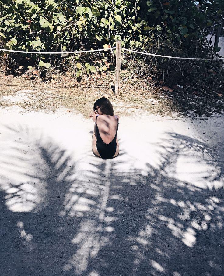 Shadows 🌴