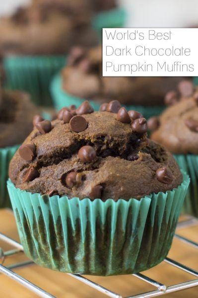 World's Best Dark Chocolate Pumpkin Muffins Recipe - Fancy Shanty