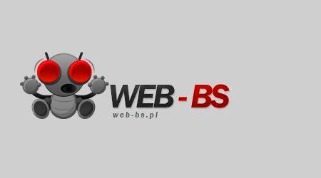 Profesjonalne strony www oraz usługi informatyczne
