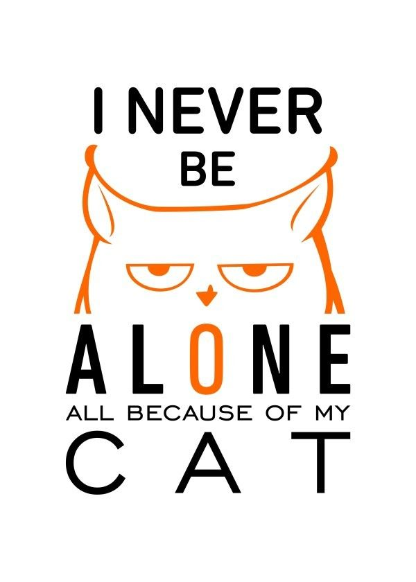 I never be #alone - all because of my #cat on metal #poster.  Available on Displate https://displate.com/displate/170962
