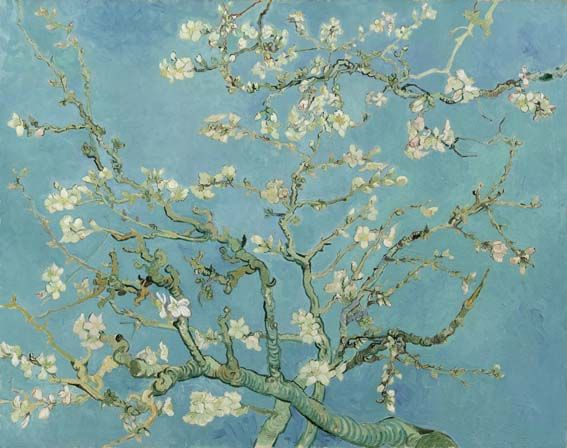 Almond Blossom Saint-Rémy-de-Provence, February 1890 Vincent van Gogh (1853 - 1890) oil on canvas, 73.3 cm x 92.4 cm Van Gogh Museum, Amsterdam (Vincent van Gogh Foundation)