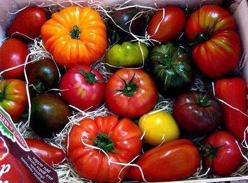 Best Heirloom Tomato Varieties Here Are The Top 400 x 300
