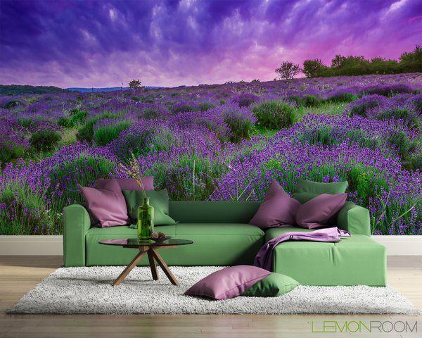 #Fototapeta z aranżacji ➡ http://lemonroom.pl/fototapeta-0-wyniki-wyszukiwania-49776996-Sunset-over-a-summer-lavender-field-in-Tihany-Hungary.html   #Fototapety #wallmurals #lavender #walldecor #interiordesign