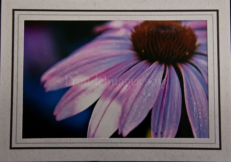Raven black border with granite accent border frame available for any card.