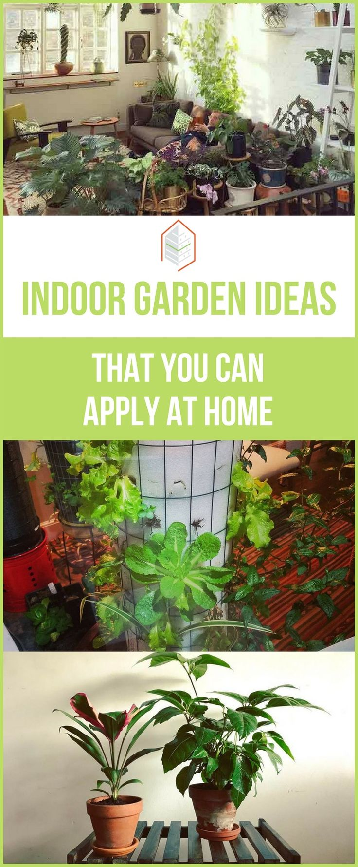 182418 best gardening and landscape images on pinterest for Indoor vegetable gardening tips