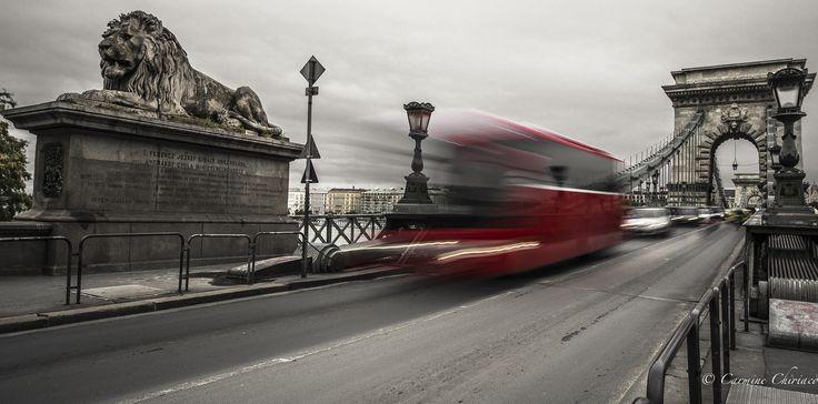 speedy Bus by Carmine Chiriacò on 500px