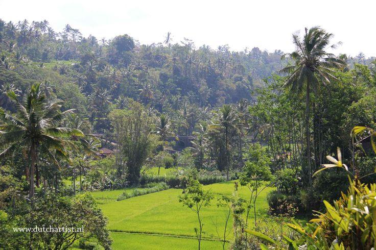 Sidemen Bali 18 okt 2014