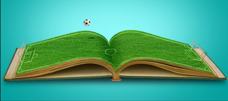 Procurando livros de marketing esportivo? Confira nossa lista com 15 livros de marketing esportivo fáceis de encontrar e comprar.