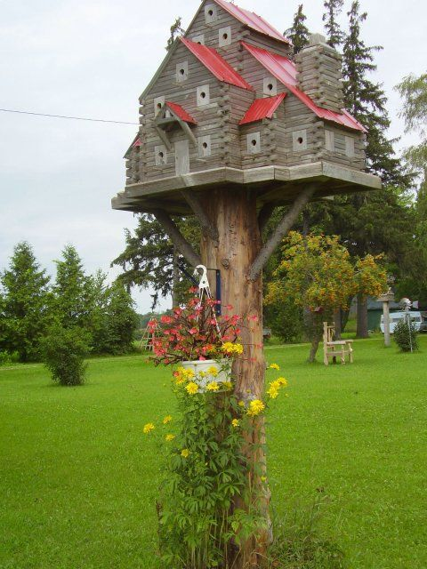 Extremebirdhouses.com  wow... wow... OMG... and AWESOME.