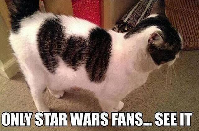 """Star Wars is one the greatest franchises of all time and has some of the best memes. For the die hard fan, you occasionally look at something and think... """"Whoa! This reminds me of Star Wars!"""" We have collected 21 of these awesome """"Whoa!"""" moments for your viewing pleasure! Scroll down to view some of the most awesome Star Wars image """"coincidences""""."""