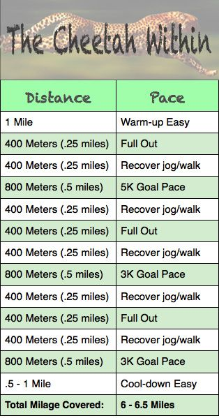 Want A PR: 3 Favorite Speed Workouts To Make A PR Happen.