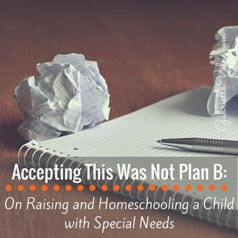 Accepting This Was Not Plan B- On Raising and Homeschooling a Child with Special Needs