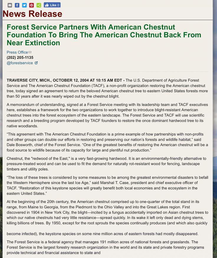 American chestnut su Pinterest Vecchi cestini, Cestini stile - sample executive agreement