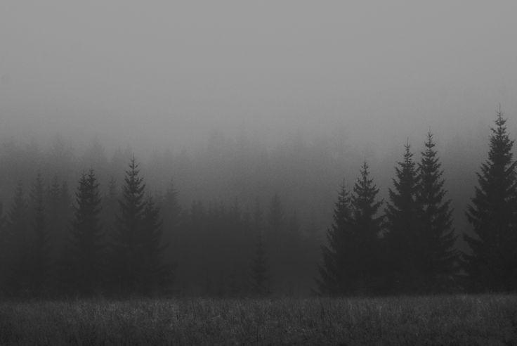 MOUNTAIN MOOD | Kat von Rose ||  BLOG details: http://kat-von-rose.blogspot.com/2016/11/mountain-mood-photography.html      #forest #fog #blue #woods #mystical #magical #foggy  #nature #dark #landscape #trees #vintage #dark #black #noir #nero #blackandwhite #pale #kuro