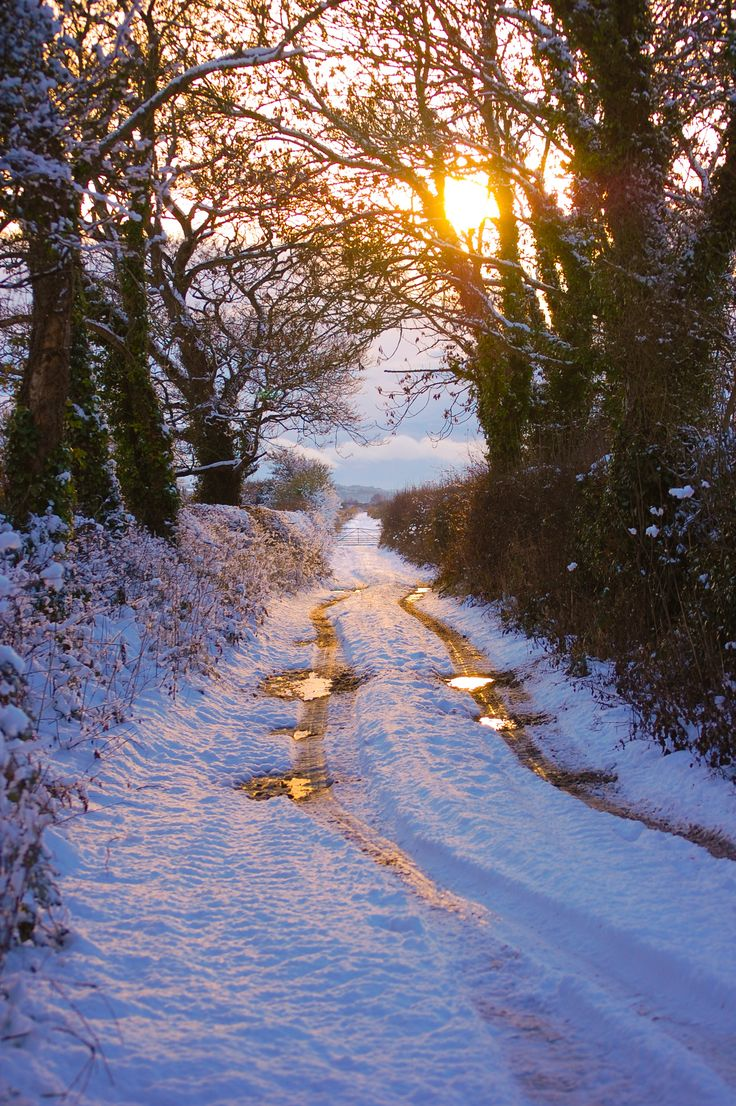 Winter sunset on a country road (no location given) by Sharon Jones-Williams