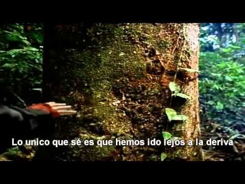 Canción de la Tierra ( Earth Song)-Michael Jackson/Subtitulada en Español