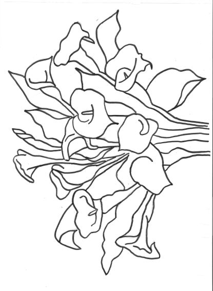 dibujos para colorear alcatraces