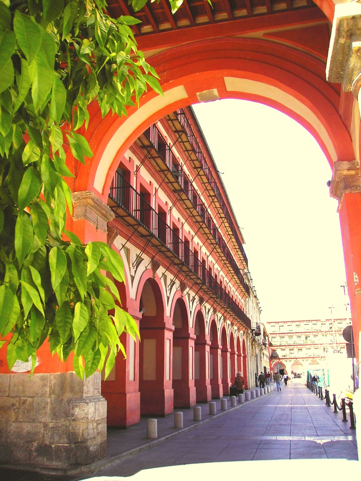 Andalucía, Spain. http://www.costatropicalevents.com/en/costa-tropical-events/andalusia/welcome.html