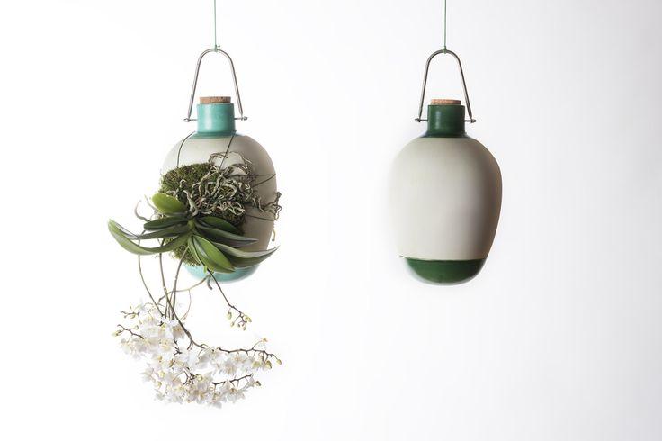 Epiphytes by Dossofiorito una altra manera (més fàcil'?) de tenir plantes a casa.
