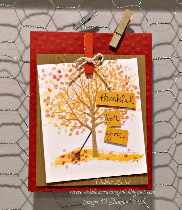Debbie's Creative Spot: New Weekly Deals - and Sheltering Tree Cards