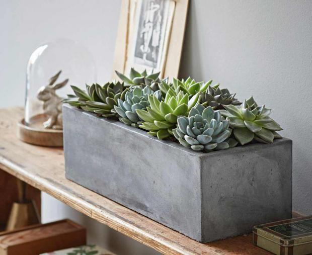 die 25 besten ideen zu beton kunst auf pinterest zement beton basteln und zement basteleien. Black Bedroom Furniture Sets. Home Design Ideas