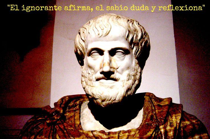 Frases De Aristóteles: 17 Best Images About 1001 Frases De La Vida On Pinterest
