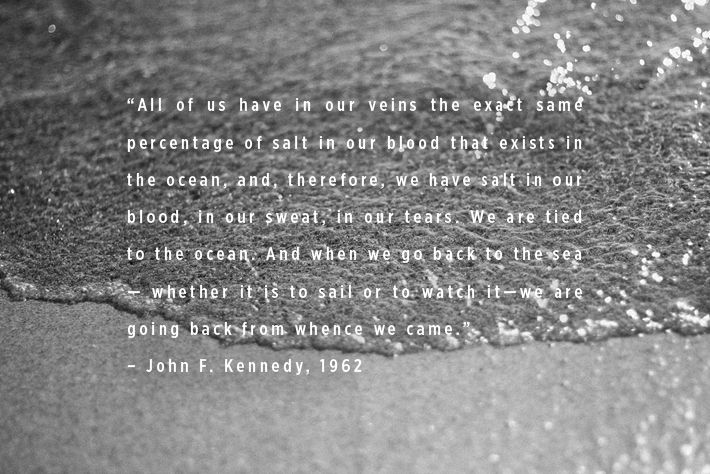 """All of us have in our veins the exact same percentage of salt in our blood that exists in the ocean, and, therefore, we have salt in our blood, in our sweat, in our tears. We are tied to the ocean. And when we go back to the sea -- whether it is to sail or to watch it -- we are going back from whence we came.""   John F. Kennedy"