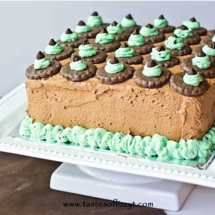 Fresh mint cake recipes